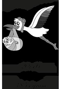 Dop gravyr på termos med motiv Stork2