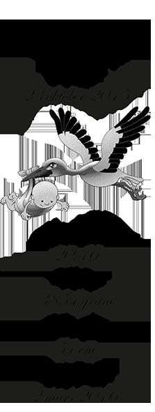 Dop gravyr på termos med motiv Stork3